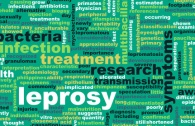 Leprosy Treatment and Research as a Concept