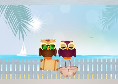 Bekanntschaften owl